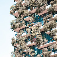 Buy canvas prints of Bosco Verticale Tower In Milan, Urban Nature Italy by Radu Bercan