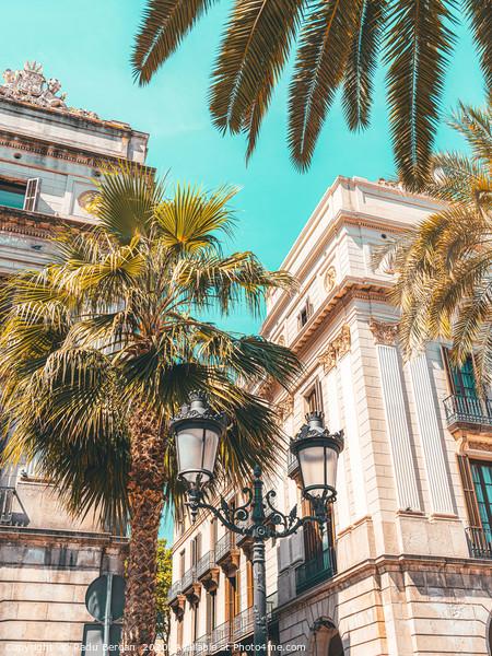 Royal Square Barcelona City, Placa Reial Landmark Framed Mounted Print by Radu Bercan