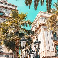 Buy canvas prints of Royal Square Barcelona City, Placa Reial Landmark by Radu Bercan