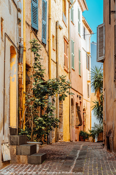 Street In Cannes, French Riviera, Cote D'Azur Framed Print by Radu Bercan