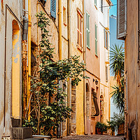 Buy canvas prints of Street In Cannes, French Riviera, Cote D'Azur by Radu Bercan