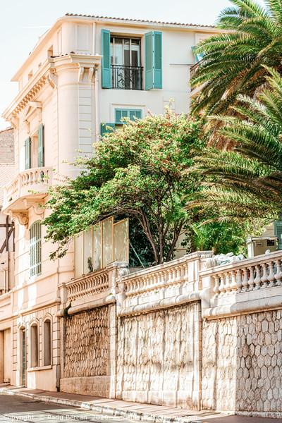 Charming Cannes City Streets, France Cote D'Azur Canvas Print by Radu Bercan