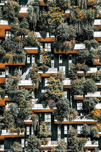 Bosco Verticale Natural Tree Tower, Milan Italy Framed Mounted Print by Radu Bercan