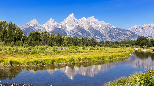 Schwabacher landing with its reflection. Grand Tet Framed Mounted Print by Pere Sanz