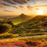 Buy canvas prints of Path you Roseberry by Northern Wild