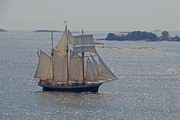 Finish three masted sailing ship Print by chris hyde