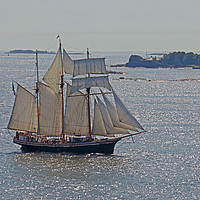 Buy canvas prints of Finish three masted sailing ship by chris hyde
