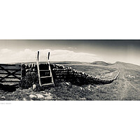 Buy canvas prints of Wall and Stile near Hadrian's Wall  by Michael Angus