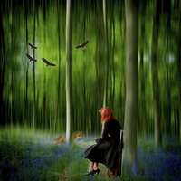 Buy canvas prints of Red riding hood in Blue Bell wood   Digital art by David French