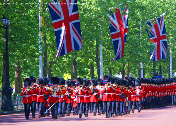 Coldstream Guards Trooping The Colour Canvas Print by Laurence Tobin