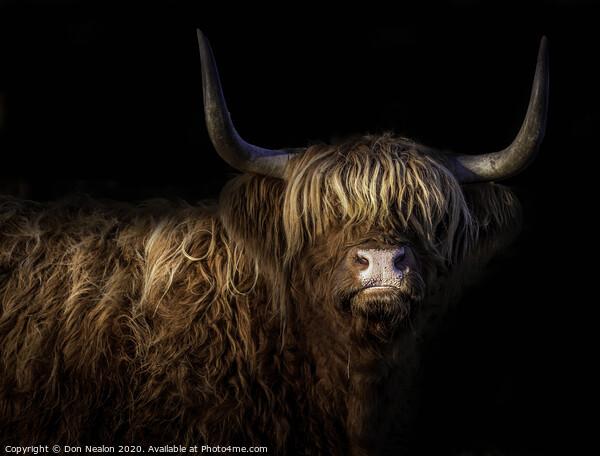 Highland fringe Framed Print by Don Nealon