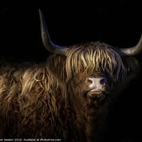 Buy canvas prints of Highland fringe by Don Nealon