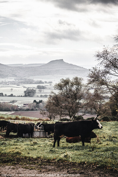 Roseberry Topping Print by Jaxx Lawson