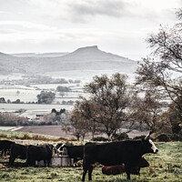 Buy canvas prints of Roseberry Topping by Jaxx Lawson