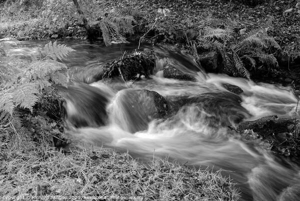 Peak district waterfall at Padley Gorge in black & Framed Print by Richard Ashbee