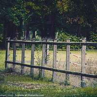 Buy canvas prints of Wooden paddock fence by Ingo Menhard