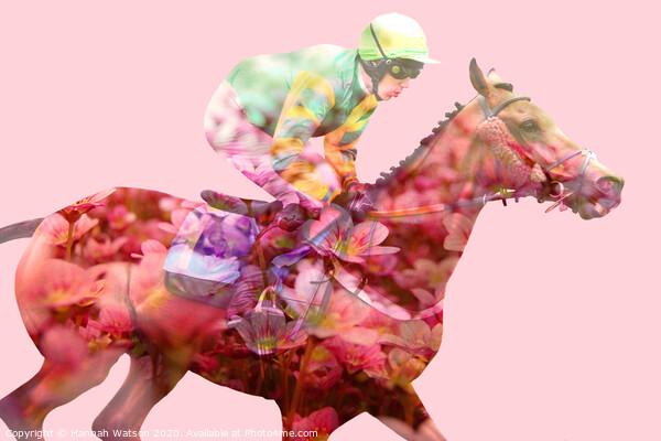 Horse Flowers Bloom Framed Print by Hannah Watson