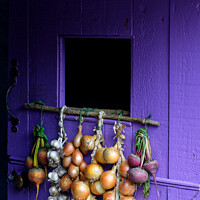Buy canvas prints of Fresh veg by Andrew Davies
