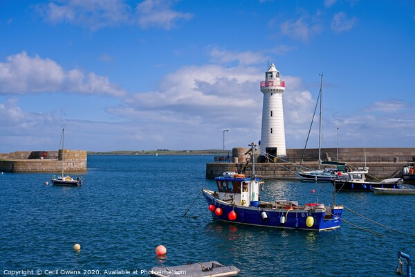 Donaghadee lighthouse Canvas Print by Cecil Owens