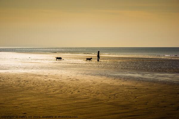 Morning Dog Walking - Amroth Canvas Print by Paddy Art