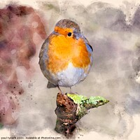 Buy canvas prints of Robin by Paul Tyzack