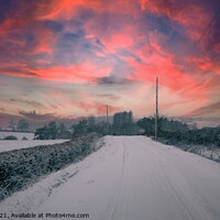 Buy canvas prints of Winter sunset along the lanes by Paul Tyzack