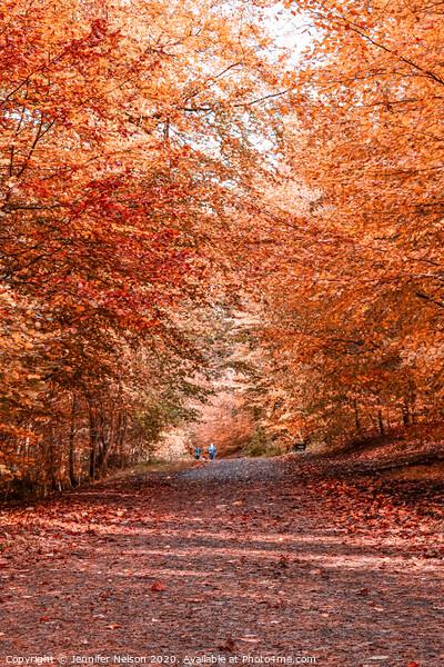 Autumn in Ormeau Park Belfast Acrylic by Jennifer Nelson