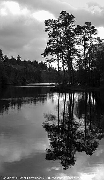 Tarn Hows in monochrome - Lake District Framed Print by Janet Carmichael