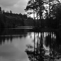 Buy canvas prints of Tarn Hows in monochrome - Lake District by Janet Carmichael