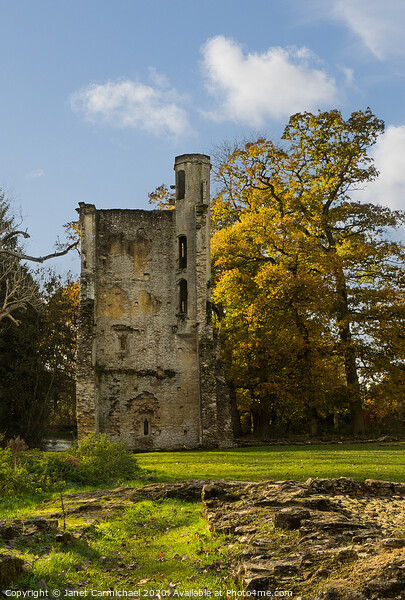 South Tower, Minster Lovell ruins - Oxfordshire Framed Print by Janet Carmichael