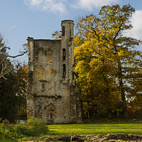 Buy canvas prints of South Tower, Minster Lovell ruins - Oxfordshire by Janet Carmichael