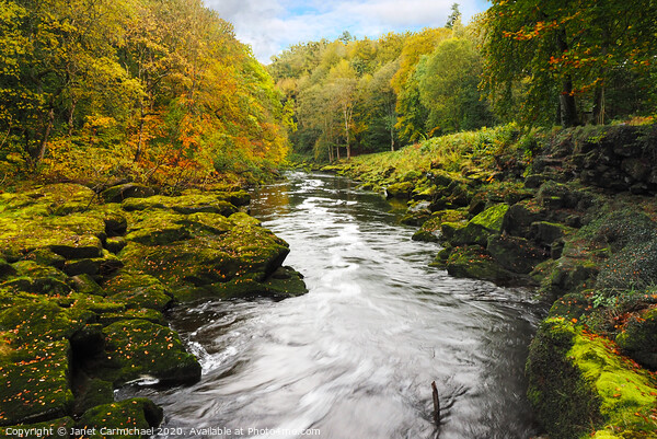 The Strid, Yorkshire Dales Framed Print by Janet Carmichael