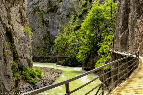 Aare Gorge Walkway & Trees Acrylic by Paul Stapleton