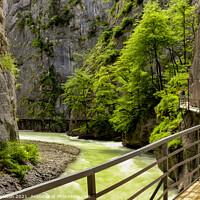 Buy canvas prints of Aare Gorge Walkway & Trees by Paul Stapleton