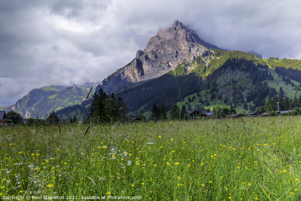 Swiss meadow in front of a mountain Acrylic by Paul Stapleton