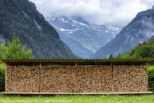 Chopped Wood near Lauterbrunnen Acrylic by Paul Stapleton