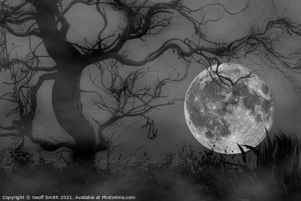 Spooky Woods at Full Moon Framed Print by Geoff Smith