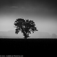 Buy canvas prints of Louth Lincolnshire, Misty lone tree on a ploughed field in Back and White by Gary Flack