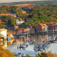 Buy canvas prints of Whitby harbour by Sue Walker