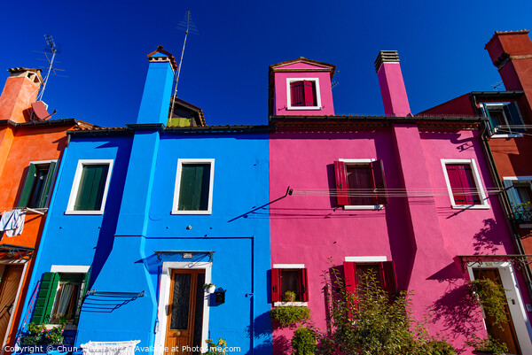 Burano island, famous for its colorful fishermen's houses, in Venice, Italy Print by Chun Ju Wu