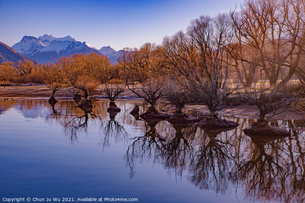 Reflection of trees on lake in winter in Glenorchy, New Zealand Framed Print by Chun Ju Wu