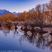 Buy canvas prints of Reflection of trees on lake in winter in Glenorchy, New Zealand by Chun Ju Wu