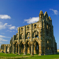 Buy canvas prints of Whitby Abbey by Nic Croad
