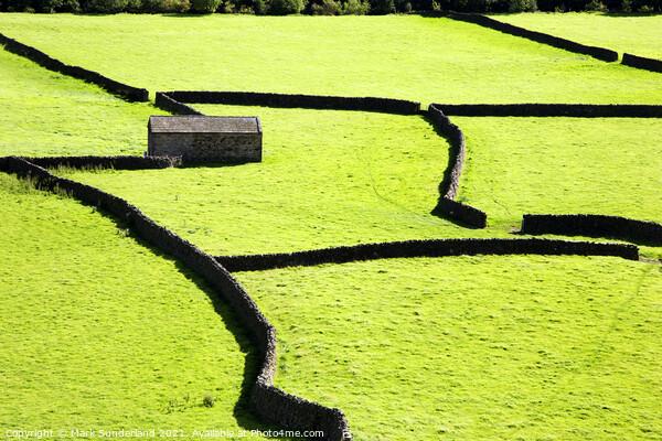 Field Barn and Dry Stone Walls at Gunnerside Print by Mark Sunderland