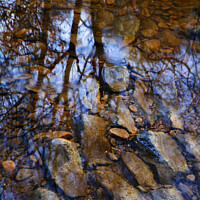 Buy canvas prints of Reflection in Hebden Water by Mark Sunderland