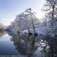 Buy canvas prints of River Nidd in Winter Knaresborough by Mark Sunderland