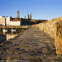 Buy canvas prints of Harbour and Cathedral St Andrews Fife Scotland by Mark Sunderland