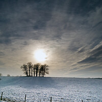 Buy canvas prints of Winter tree silhouette with snowy field and dramatic sky by Mark Chapman