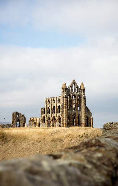 Whitby Abbey Print by Neil Overy