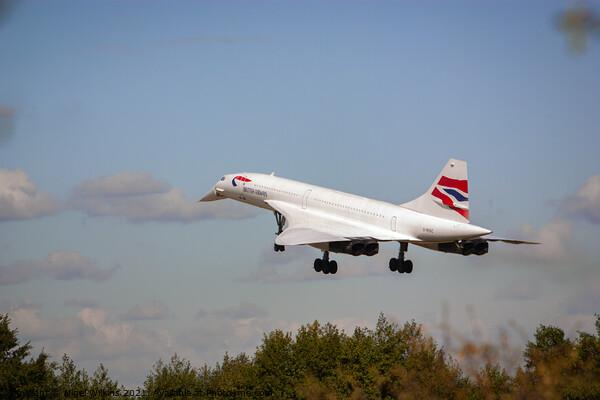 Concorde Landing Framed Print by Nigel Wilkins